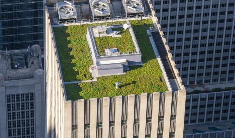 Kom och lär dig mer om gröna tak